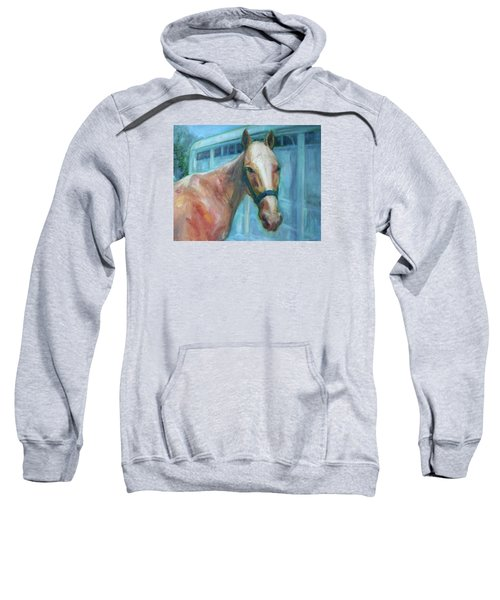 Custom Pet Portrait Painting - Original Artwork -  Horse - Dog - Cat - Bird Sweatshirt