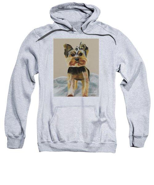Cute Yorkie Sweatshirt