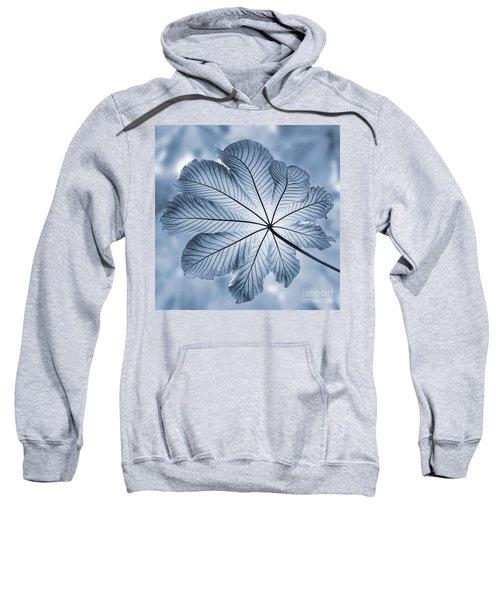 Cyanotype Rain Forest Leaf Sweatshirt