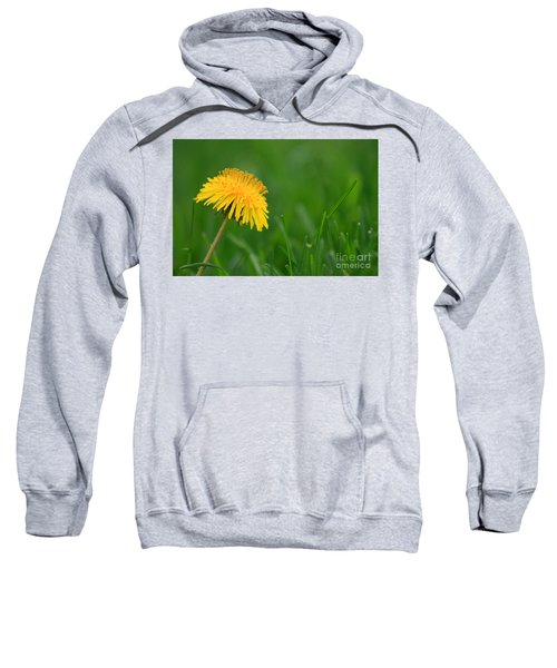 Dandelion Flower Sweatshirt