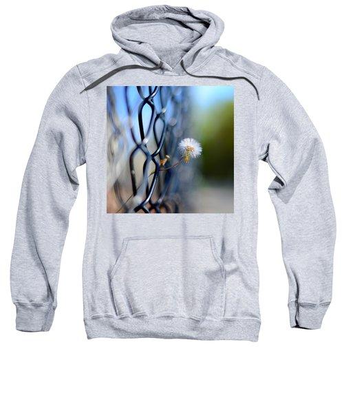 Dandelion Wish Sweatshirt