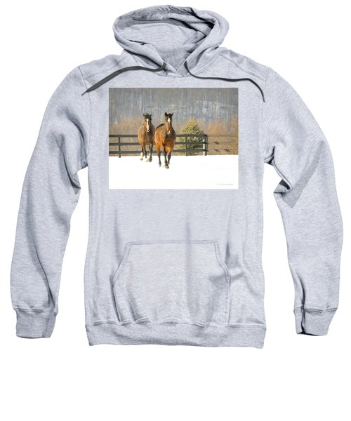 Dashing Through The Snow Sweatshirt