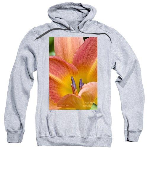 Day Lily  3 Sweatshirt