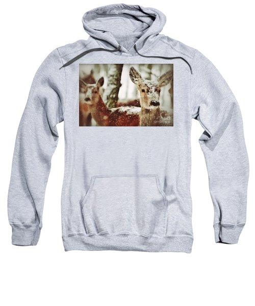 Deer In The Snow Sweatshirt