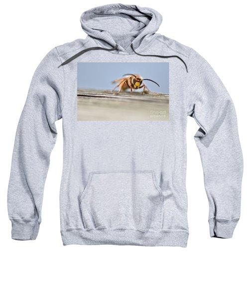 Defrosting Sweatshirt