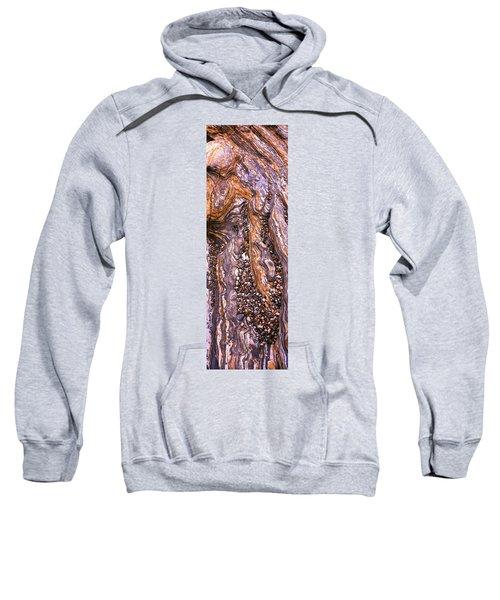 Detail Study Of Erosion Patterns Sweatshirt