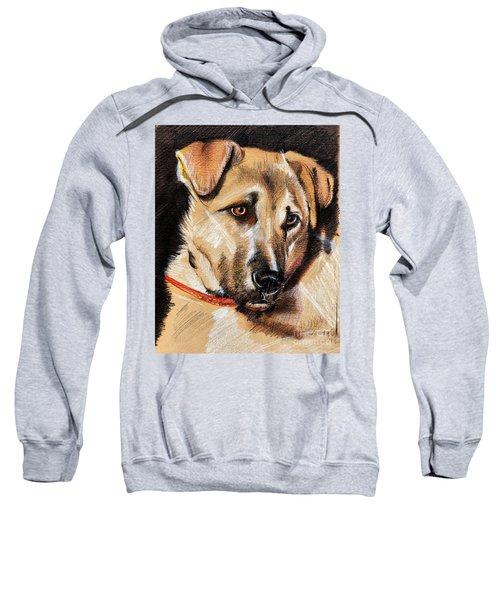 Dog Portrait Drawing Sweatshirt