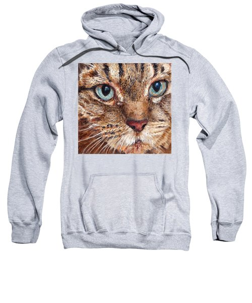 Domestic Tabby Cat Sweatshirt