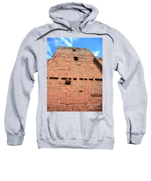 Sweatshirt featuring the photograph Dominating by Denise Railey