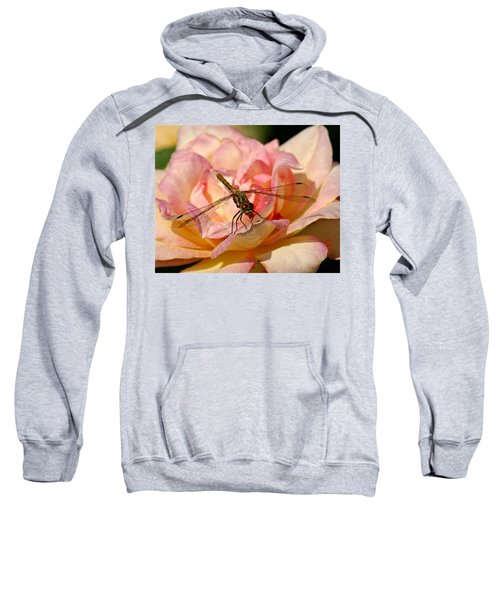 Dragonfly On A Rose Sweatshirt
