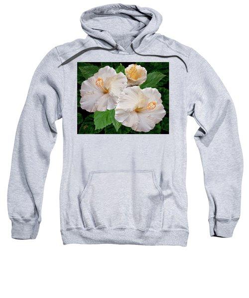 Dreamy Blooms - White Hibiscus Sweatshirt