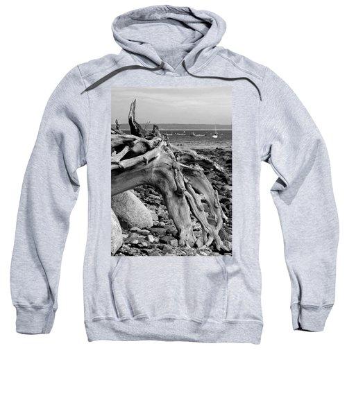 Driftwood On Rocky Beach Sweatshirt