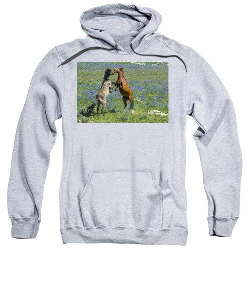 Dueling Mustangs Sweatshirt