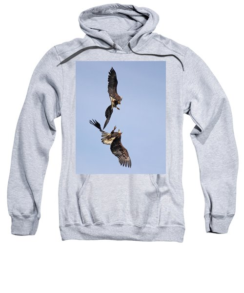 Eagle Ballet Sweatshirt
