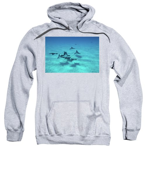 Eagle Rays Swimming In The Pacific Sweatshirt