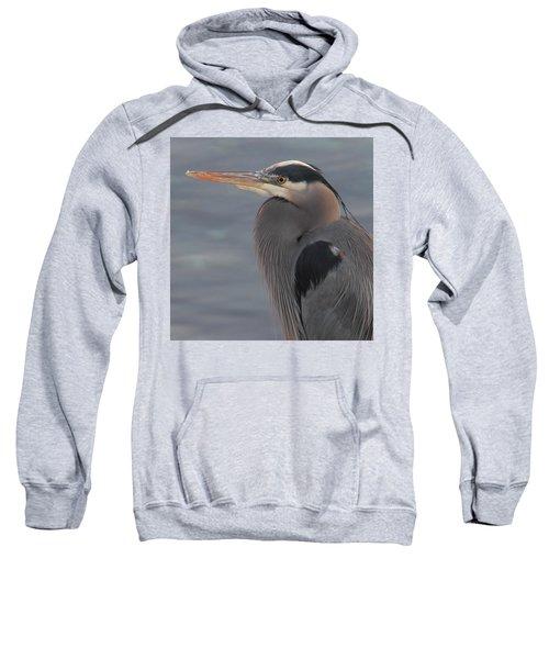 Early Bird 2 Sweatshirt