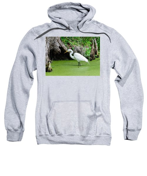 Egret Fishing Sweatshirt