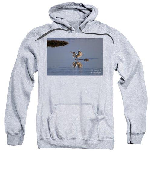 Egret Reflections Sweatshirt