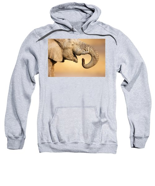 Elephant Drinking Sweatshirt