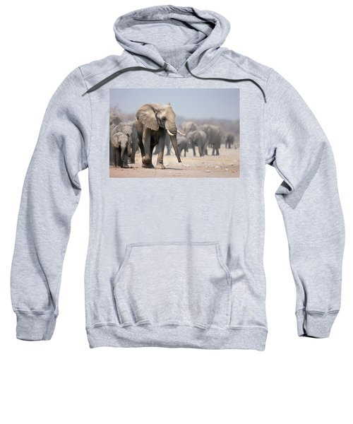 Elephant Feet Sweatshirt