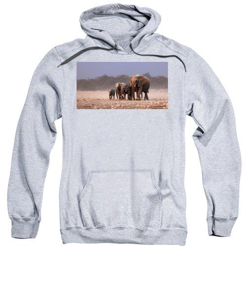 Elephant Herd Sweatshirt