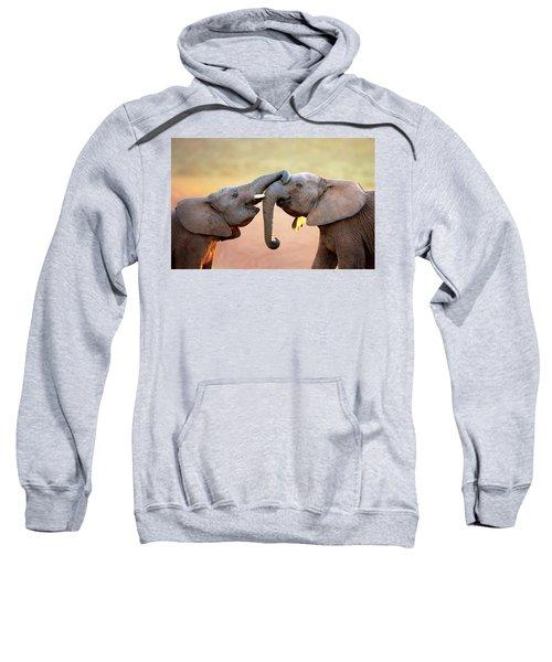 Elephants Touching Each Other Sweatshirt
