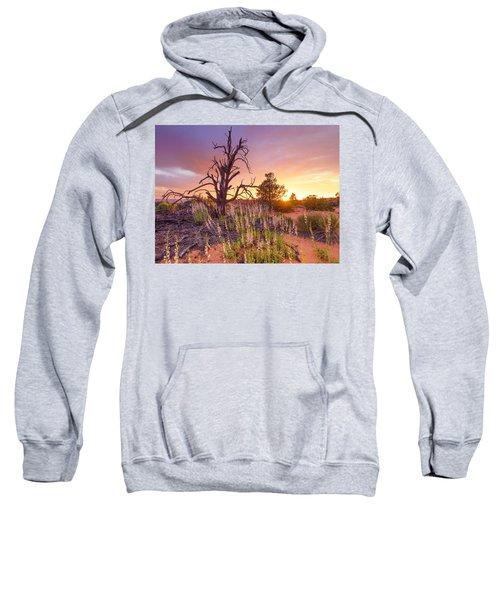 Enchanted Sweatshirt