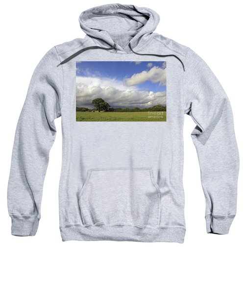 English Oak Under Stormy Skies Sweatshirt