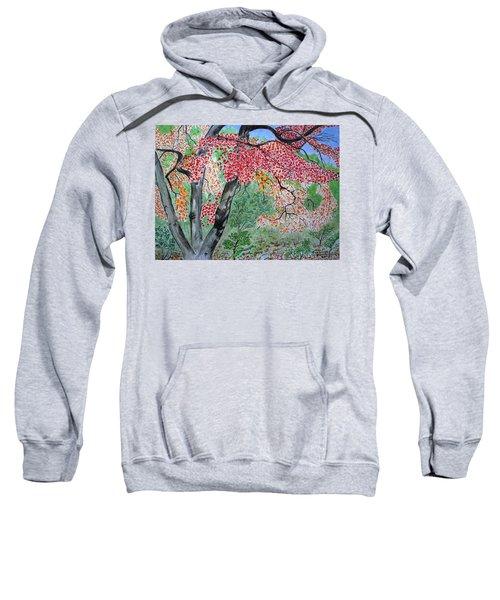 Enjoying Lost Maples Sweatshirt