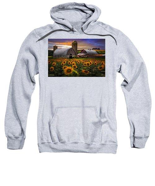 Evening Sunflowers Sweatshirt