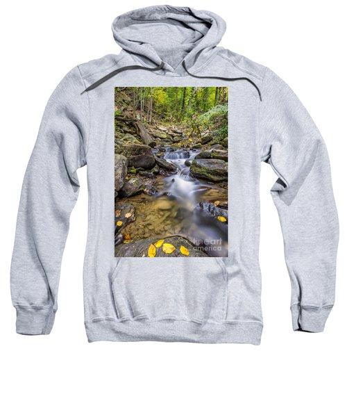 Fall Arrives At Amicalola Falls Sweatshirt