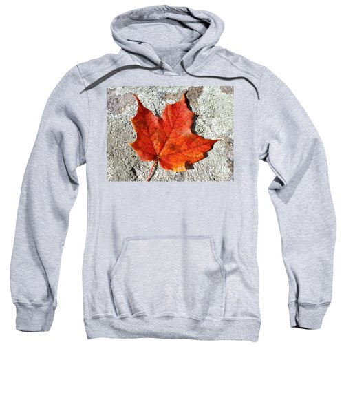 Fall Sweatshirt