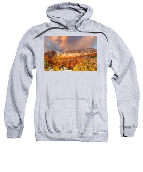 Fall On Display Sweatshirt