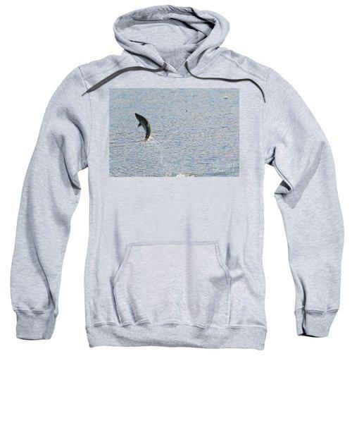 Fighting Chinook Salmon Sweatshirt