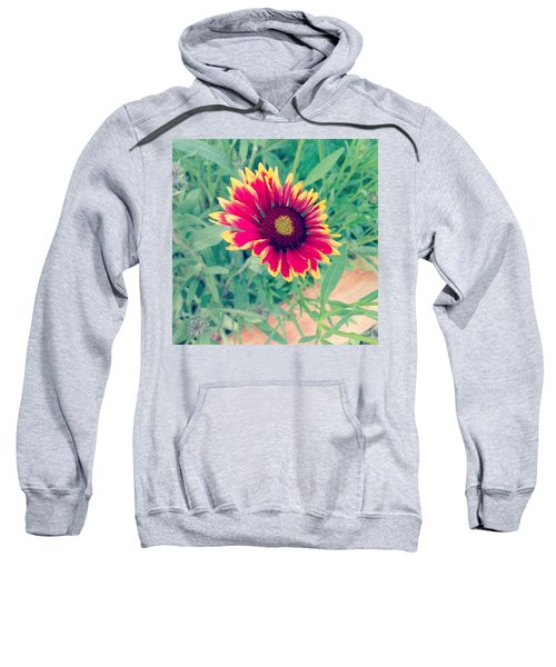 Fire Daisy Sweatshirt