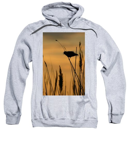 First Light Sweatshirt
