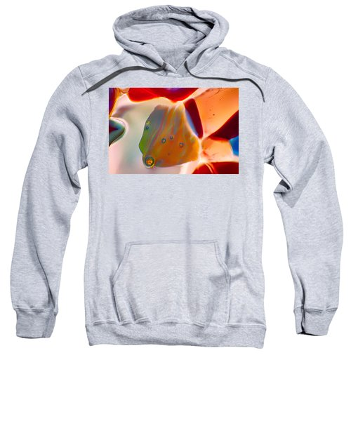 Fish Blowing Bubbles Sweatshirt