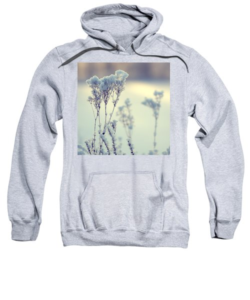 Fleeting Moment Sweatshirt