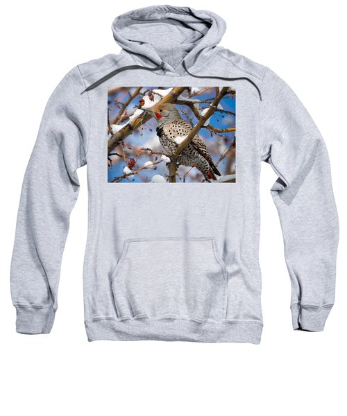 Flicker In Snow Sweatshirt