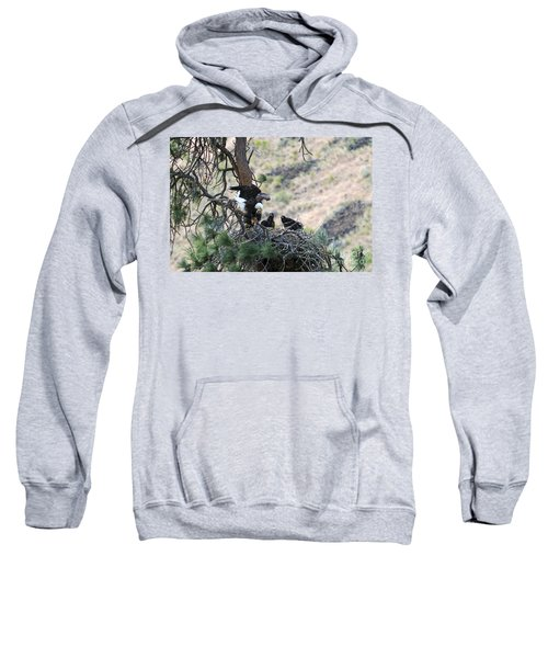 Flight Training Sweatshirt