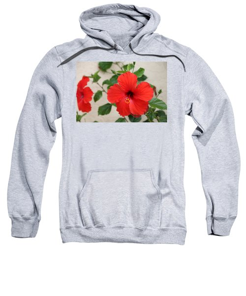 Floral Beauty  Sweatshirt