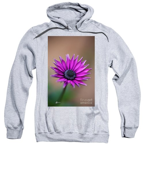 Flower-daisy-purple Sweatshirt