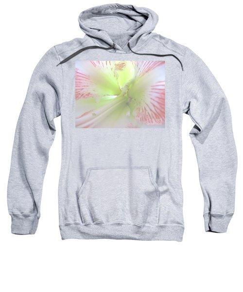 Flower Of Light Sweatshirt