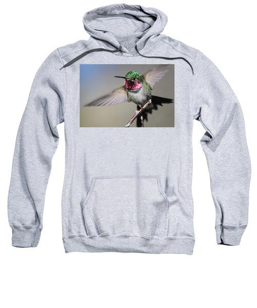 Fluttering Sweatshirt