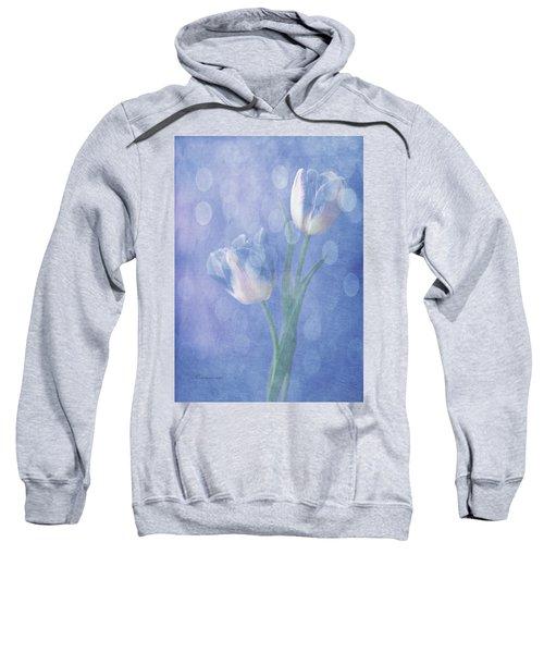 Forgotten Dreams Sweatshirt