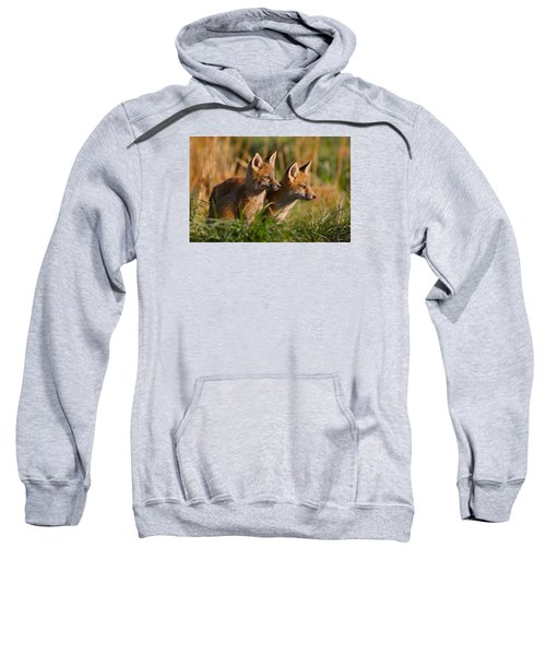 Fox Cubs At Sunrise Sweatshirt