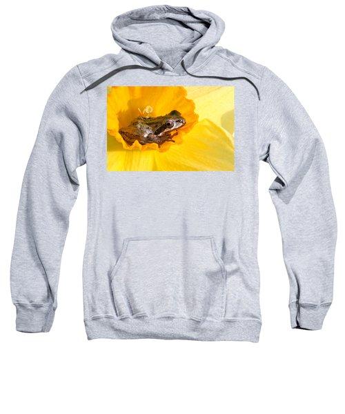 Frog And Daffodil Sweatshirt