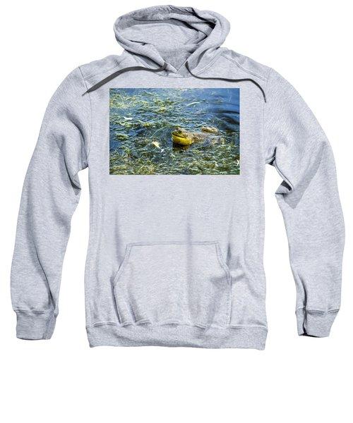 Frog Song Sweatshirt