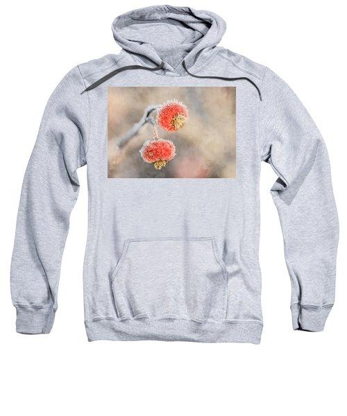 Frosted Rosehips Sweatshirt