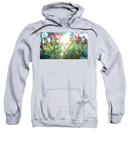 Frosty Flare Sweatshirt
